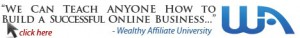 wealthy affiliate successful business