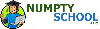 Numpty School