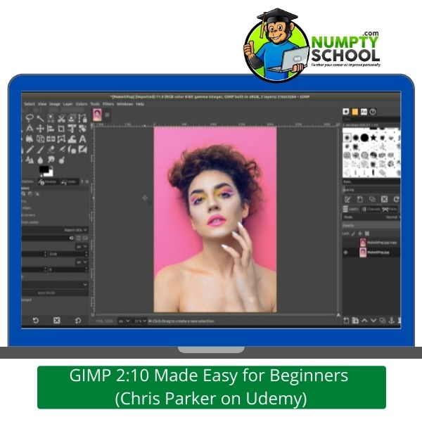 GIMP Made Easy for Beginners Udemy