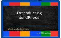 Wordpress Tutorial on Udemy - Master Quickly